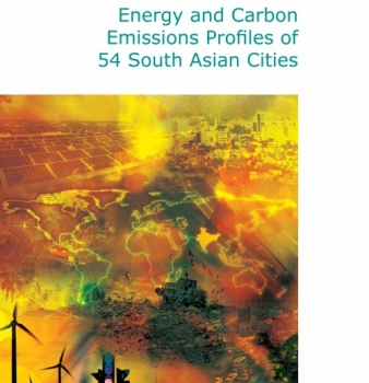 Energy and Carbon Emissions Profiles of 54 South Asian Cities