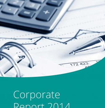 ICLEI Corporate Report 2014