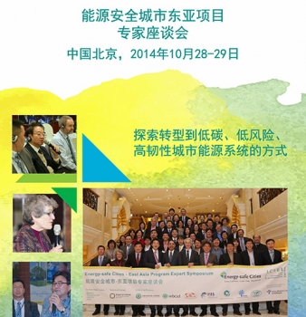 Energy-safe Cities East Asia Program Expert Symposium Report (Chinese)