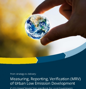 From strategy to delivery: Measuring, Reporting, Verification (MRV) of Urban Low Emission Development