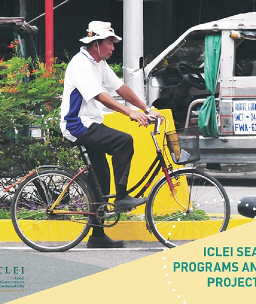 ICLEI SEAS Programs and Projects