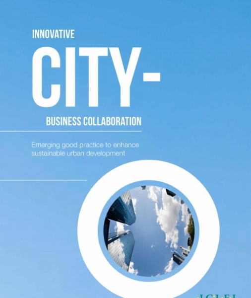 Innovative city-business cooperation: Emerging good practice to enhance sustainable urban development