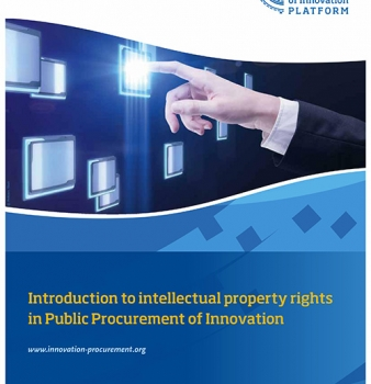 Intellectual Property Rights Guide
