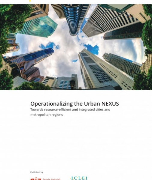 Operationalizing the Urban NEXUS: towards integrated and resource-efficient cities and metropolitan regions