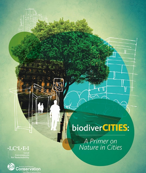biodiverCities: A primer on nature in cities